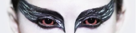 cropped-black-swan-21.png